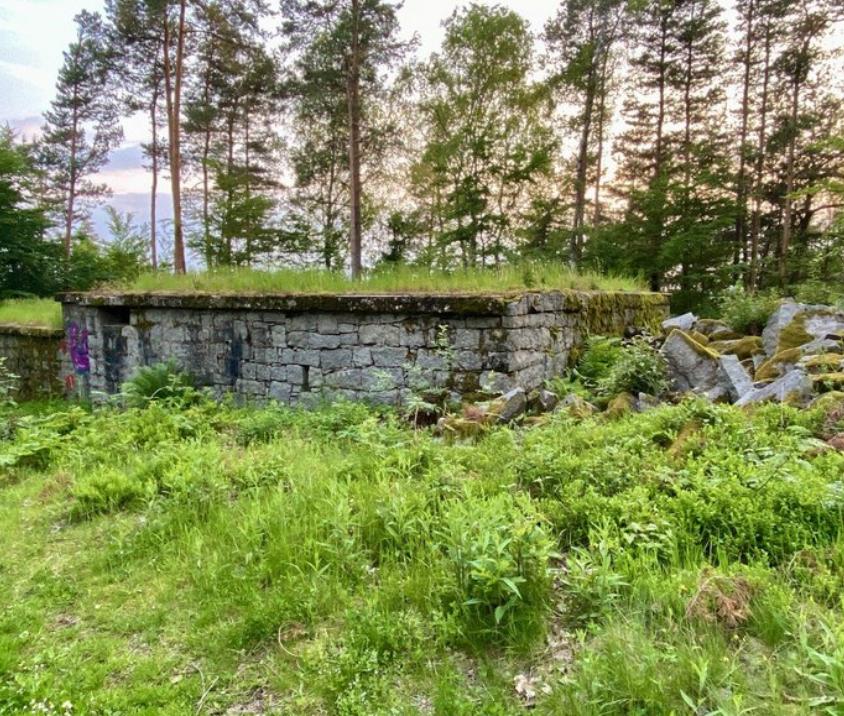 Steinhauerhaus